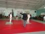 Poznański Turniej Judo Dzieci i Młodzików - Poznań, 17.11.2012 r.